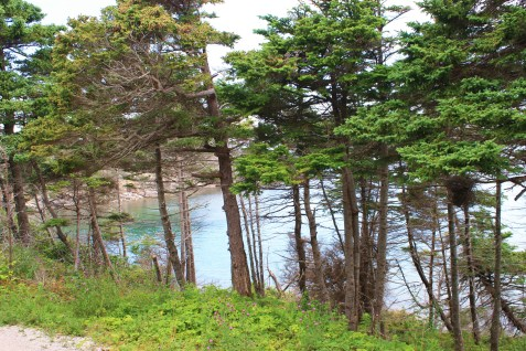 gravels-trail