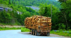 logging-was-one-of-the-big-industries-at-one-time