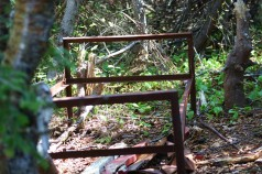 rusted-out-bed-in-the-woods