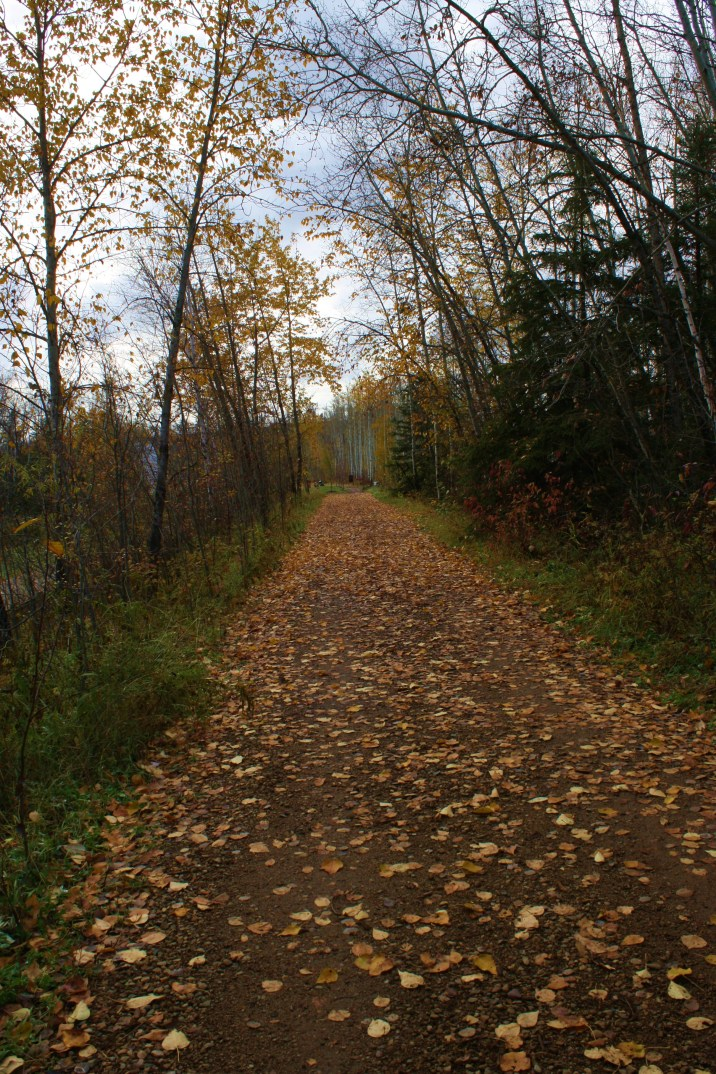 aaaaaa-beautiful-trail