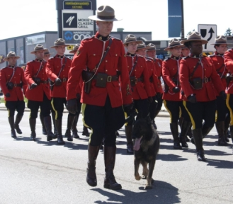 Mounties on parade