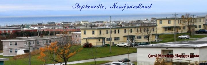 Stephenville NL RESIZED 2