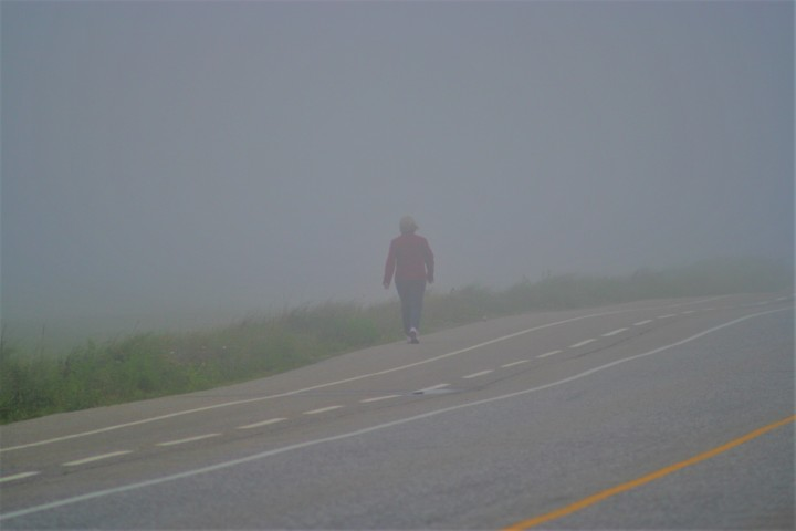 Walking through the fog- Carol Hopkins photo